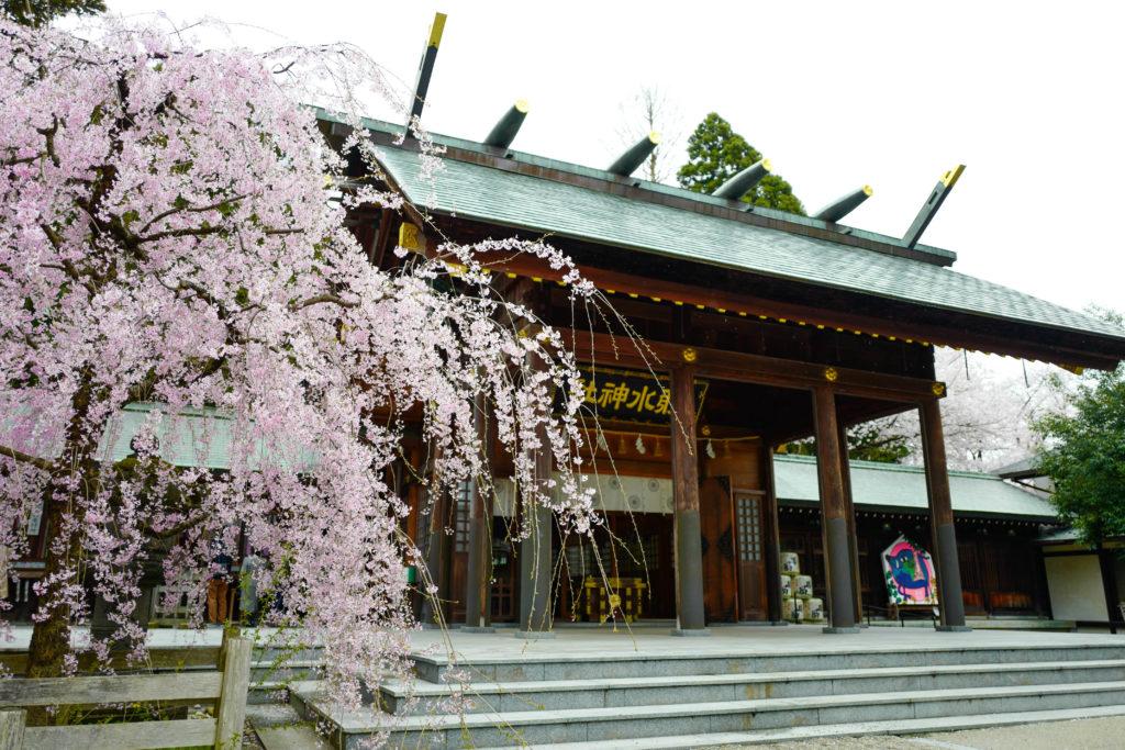 射水神社、拝殿©2019 仰木一弘 wih LeicaQ