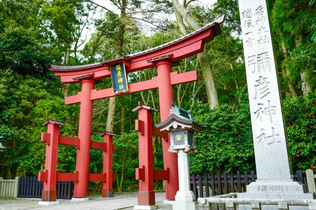 彌彦神社、鳥居、鳥居©2019 仰木一弘 wih LeicaQ